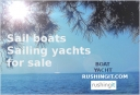 Sailboats, Sail boats - Rushingit.com
